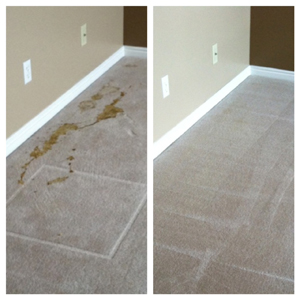 ARS Flood & Fire Cleanup Carpet Cleaning