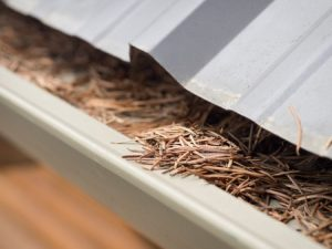 ARS Cleanup Clogged Gutters